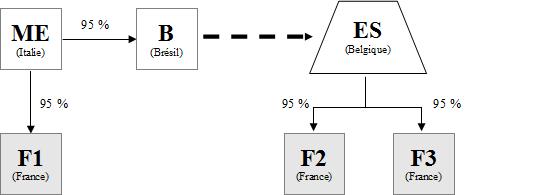 IS - Exemple d'un ES ayant statut de SE